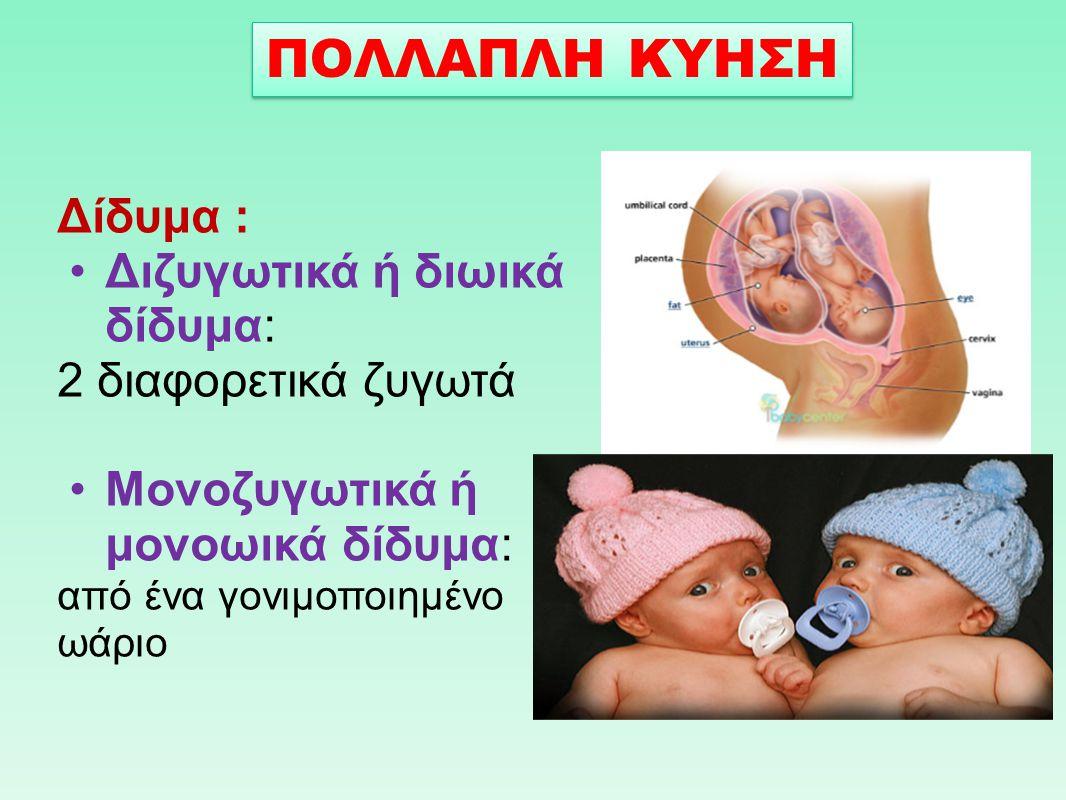 Δίδυμα : Διζυγωτικά ή διωικά δίδυμα: 2 διαφορετικά ζυγωτά Μονοζυγωτικά ή μονοωικά δίδυμα: από ένα γονιμοποιημένο ωάριο ΠΟΛΛΑΠΛΗ ΚΥΗΣΗ