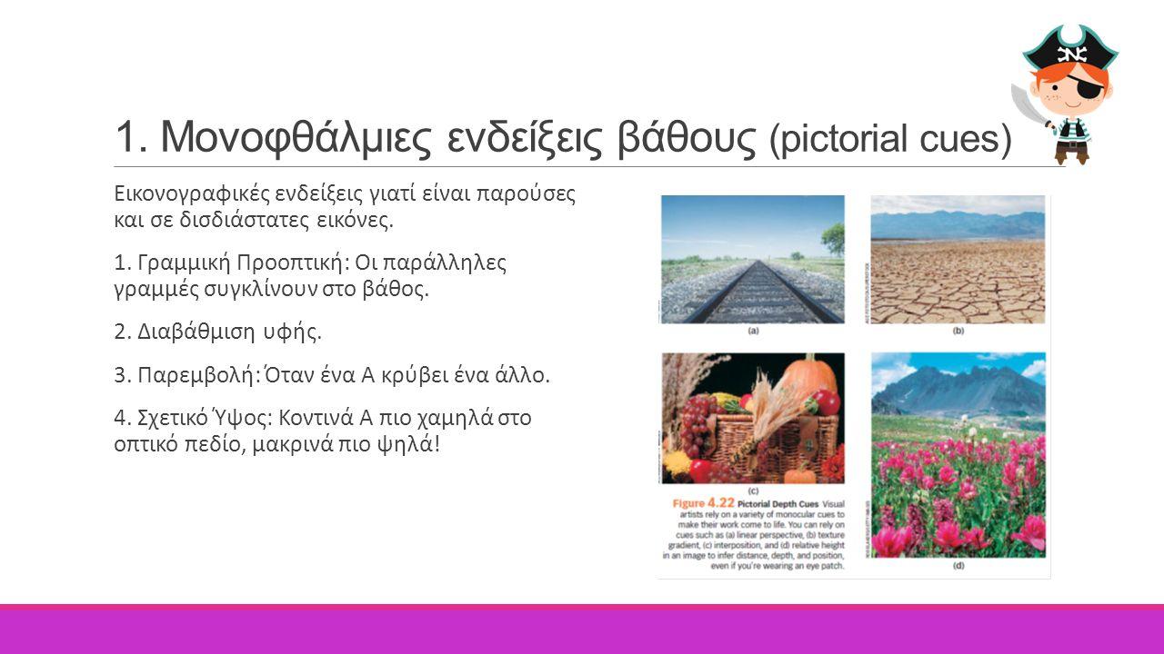 1. Μονοφθάλμιες ενδείξεις βάθους (pictorial cues) Εικονογραφικές ενδείξεις γιατί είναι παρούσες και σε δισδιάστατες εικόνες. 1. Γραμμική Προοπτική: Οι