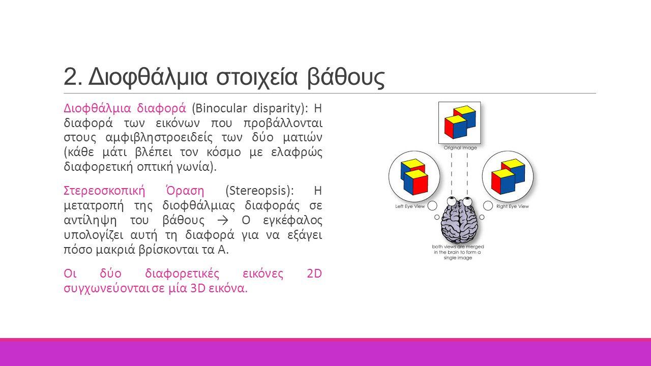 2. Διοφθάλμια στοιχεία βάθους Διοφθάλμια διαφορά (Binocular disparity): Η διαφορά των εικόνων που προβάλλονται στους αμφιβληστροειδείς των δύο ματιών