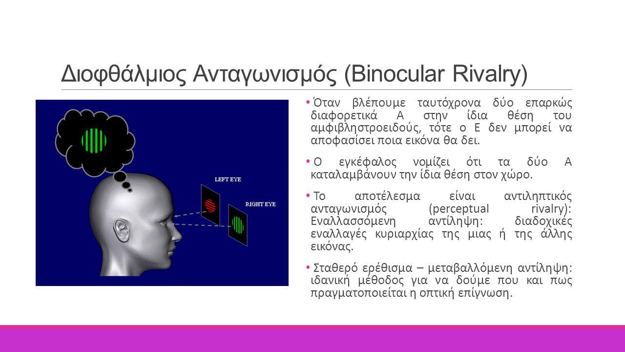 Διοφθάλμιος Ανταγωνισμός (Binocular Rivalry) Όταν βλέπουμε ταυτόχρονα δύο επαρκώς διαφορετικά Α στην ίδια θέση του αμφιβληστροειδούς, τότε ο Ε δεν μπο