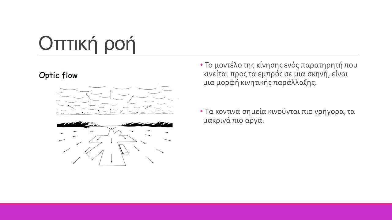 Οπτική ροή Το μοντέλο της κίνησης ενός παρατηρητή που κινείται προς τα εμπρός σε μια σκηνή, είναι μια μορφή κινητικής παράλλαξης. Τα κοντινά σημεία κι