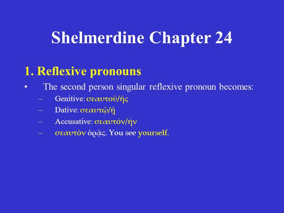 Shelmerdine Chapter 24 1.