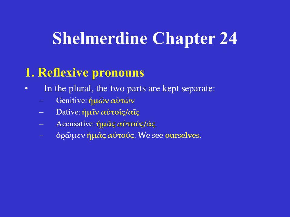 Shelmerdine Chapter 24 καὶ τότε δὴ μέγιστον θαῦμα ἐγένετο· δελφὶς γὰρ αὐτὸν ὑπολαβὼν ἐπόρευσεν εἰς γῆν.