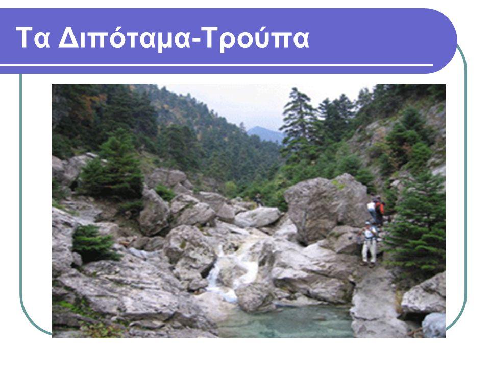 Τα Διπόταμα-Τρούπα