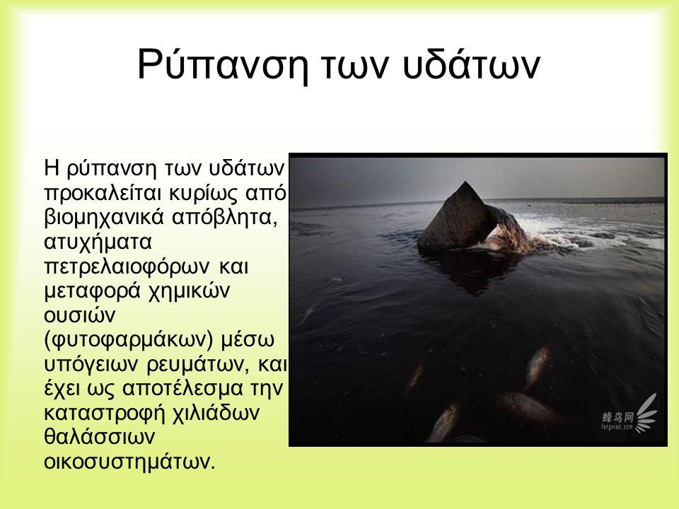 Αποτελέσματα Ερωτηματολογίου Σύμφωνα με τις απαντήσεις που πήραμε από τα ερωτηματολόγια το 68% των Ελλήνων εάν ο κάδος όπου πετάει συνήθως τα σκουπίδια ήταν γεμάτος θα τα άφηνε δίπλα στον κάδο το 28% θα τα έριχνε κάτω, ενώ μόνο το 9% θα συνέχιζε για να τα πετάξει στον επόμενο κάδο.
