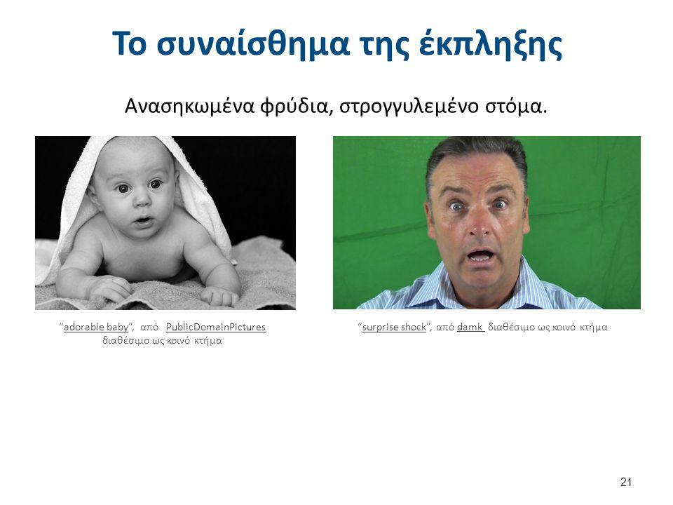 """Το συναίσθημα της έκπληξης Ανασηκωμένα φρύδια, στρογγυλεμένο στόμα. 21 """"adorable baby"""", από PublicDomainPictures διαθέσιμο ως κοινό κτήμαadorable baby"""