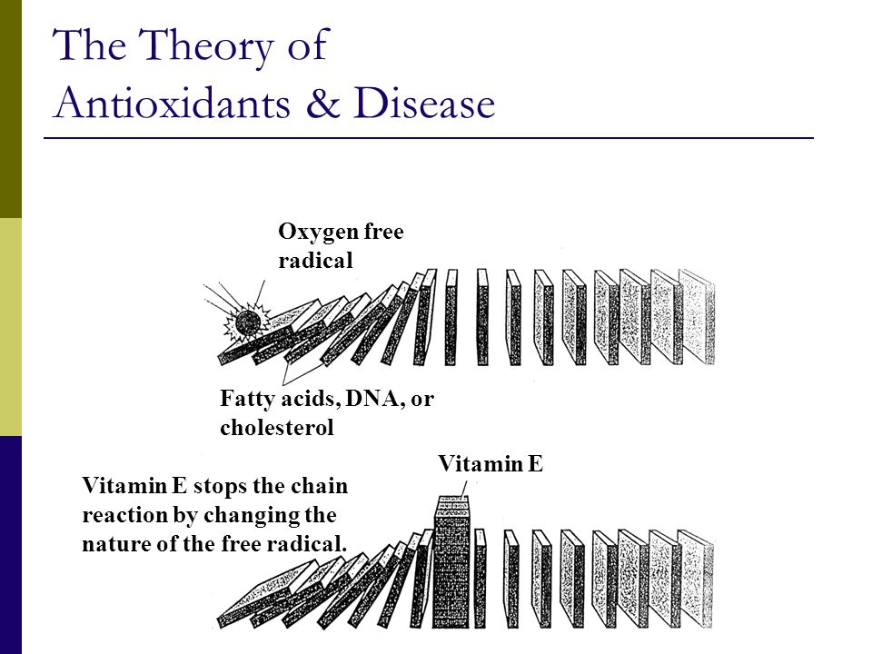 The Theory of Antioxidants & Disease Oxygen free radical Fatty acids, DNA, or cholesterol Vitamin E Vitamin E stops the chain reaction by changing the nature of the free radical.