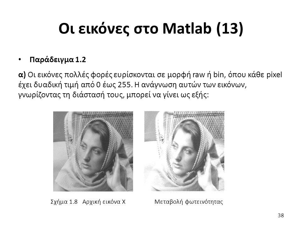 Οι εικόνες στο Matlab (13) Παράδειγμα 1.2 α) Οι εικόνες πολλές φορές ευρίσκονται σε μορφή raw ή bin, όπου κάθε pixel έχει δυαδική τιμή από 0 έως 255.
