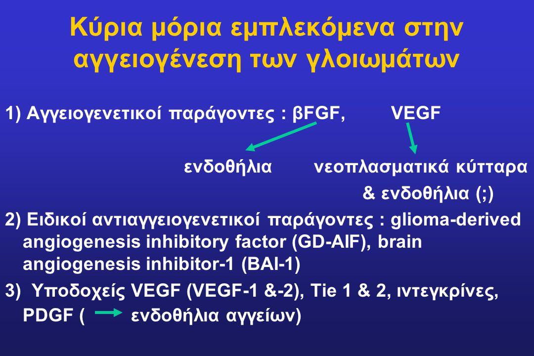 Κύρια μόρια εμπλεκόμενα στην αγγειογένεση των γλοιωμάτων 1) Αγγειογενετικοί παράγοντες : βFGF, VEGF ενδοθήλια νεοπλασματικά κύτταρα & ενδοθήλια (;) 2)