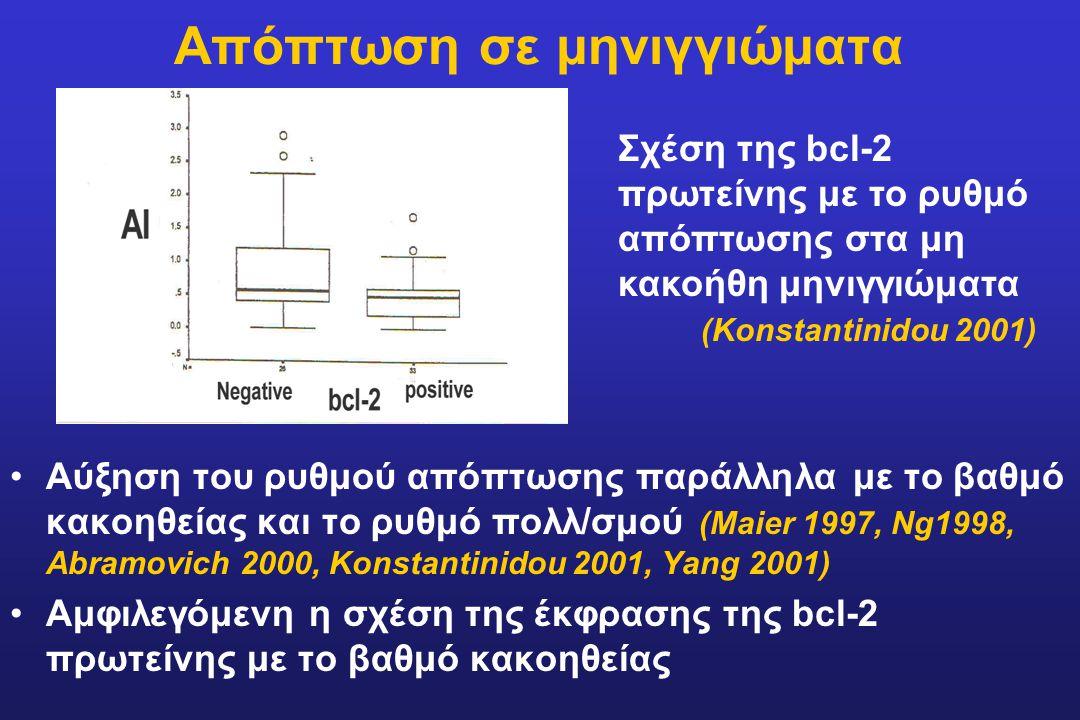 Απόπτωση σε μηνιγγιώματα Αύξηση του ρυθμού απόπτωσης παράλληλα με το βαθμό κακοηθείας και το ρυθμό πολλ/σμού (Maier 1997, Ng1998, Abramovich 2000, Kon