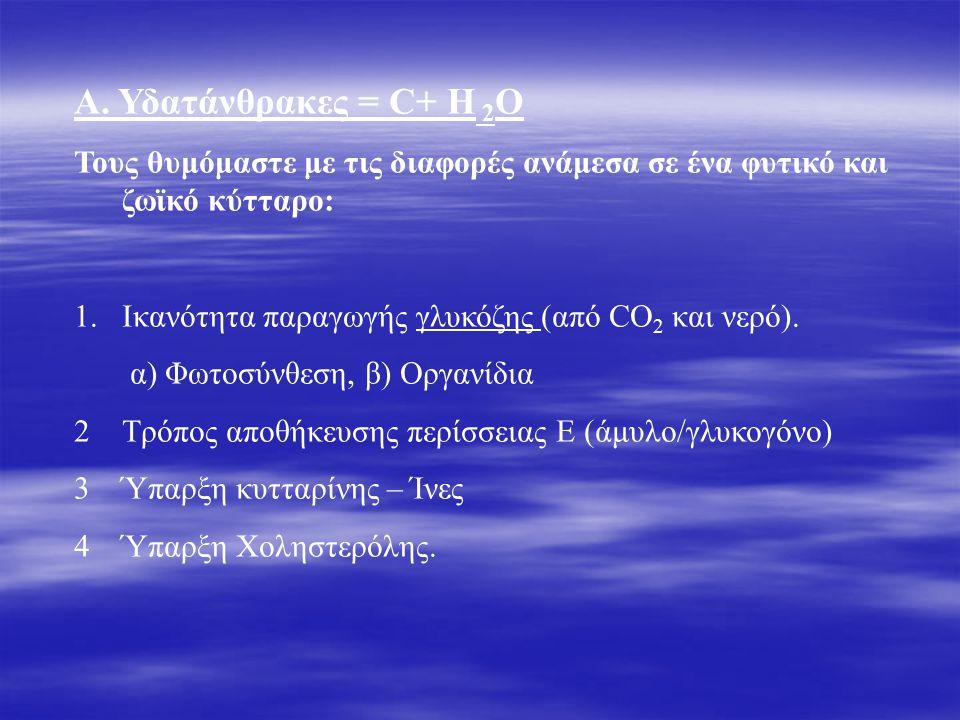 Α. Υδατάνθρακες = C+ H 2 O Τους θυμόμαστε με τις διαφορές ανάμεσα σε ένα φυτικό και ζωϊκό κύτταρο: 1.Ικανότητα παραγωγής γλυκόζης (από CO 2 και νερό).