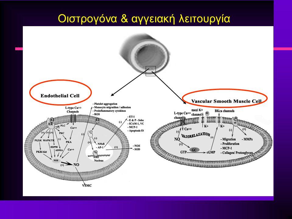 Οιστρογόνα & αγγειακή λειτουργία