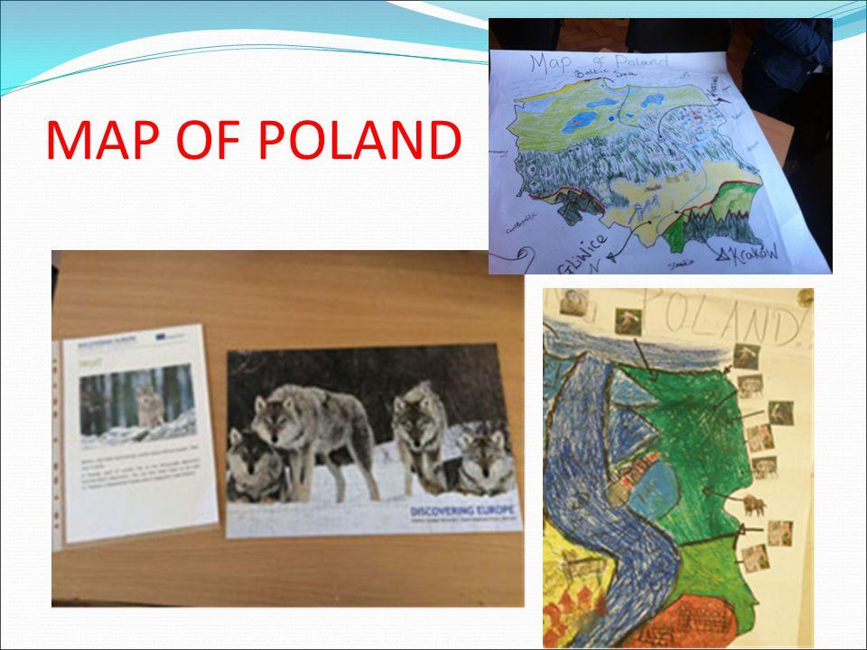 Υστερα από ένα σύντομο γεύμα στο χώρο του σχολείου, ακολούθησε η δεύτερη παρουσίαση με θέμα Η προστασία της φύσης στην Πολωνία .