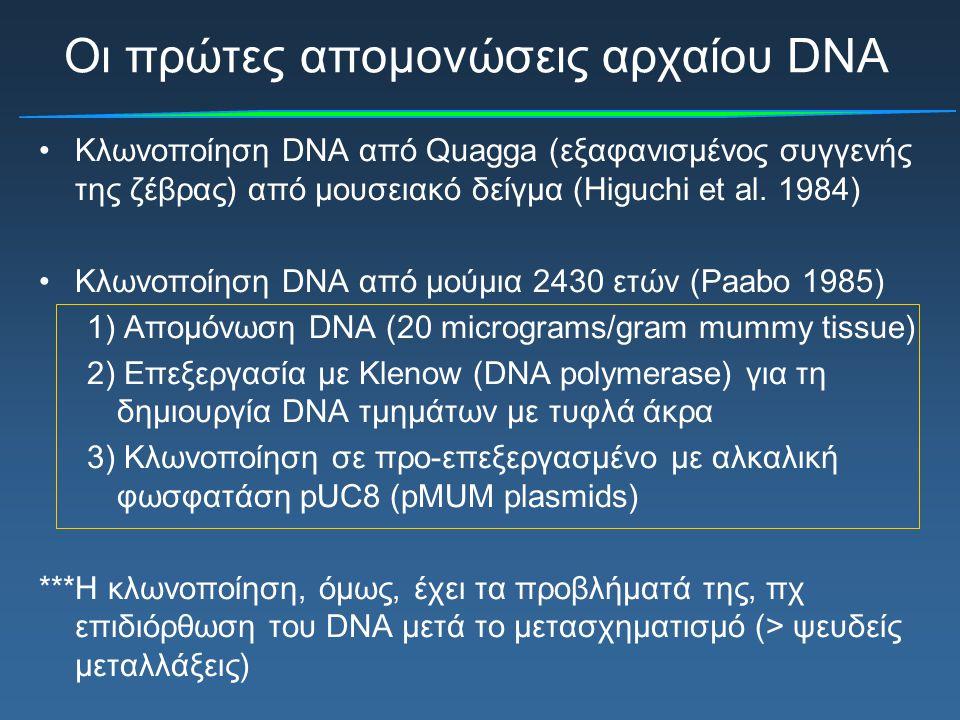 Οι πρώτες απομονώσεις αρχαίου DNA Κλωνοποίηση DNA από Quagga (εξαφανισμένος συγγενής της ζέβρας) από μουσειακό δείγμα (Higuchi et al. 1984) Κλωνοποίησ