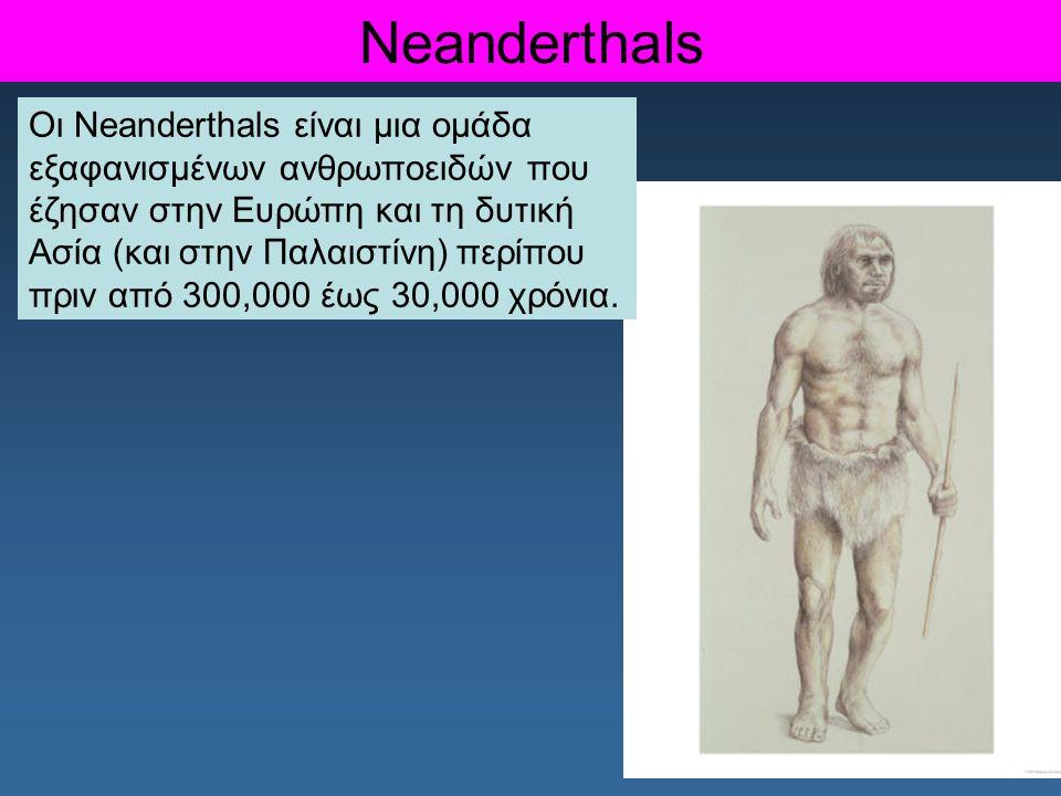 Neanderthals Οι Neanderthals είναι μια ομάδα εξαφανισμένων ανθρωποειδών που έζησαν στην Ευρώπη και τη δυτική Ασία (και στην Παλαιστίνη) περίπου πριν α