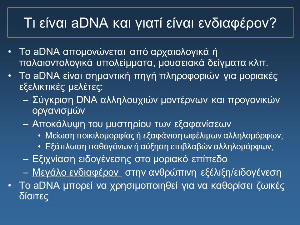 Προφυλάξεις για την PCR αρχαίου DNA (ιδιαίτερα από ανθρώπινα υπολείμματα) Βιοχημικές δοκιμές για την κατάσταση του δείγματος –Αναλογία L/D αμινοξέα Αντιδράσεις ελέγχου και κοντρόλ PCR Αντίστροφη σχέση ανάμεσα στο μέγεθος του ενισχυόμενου DNA και της απόδοσης της PCR Ποσοτικοποίηση του προς ενίσχυση DNA –Αν ο αριθμός των μορίων DNA για την PCR είναι μικρότερος του 1000, απαιτούνται τουλάχιστον 3 ανεξάρτητες αντιδράσεις ενίσχυσης, τα προϊόντα πρέπει να κλωνοποιηθούν και αρκετοί κλώνοι πρέπει να αλληλουχηθούν Ενίσχυση από δεύτερη, ξεχωριστή απομόνωση γενετικού υλικού Αναπαραγωγή σε δεύτερο εργαστήριο
