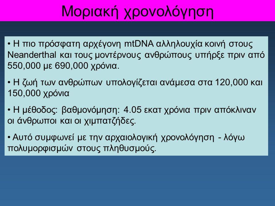 Μοριακή χρονολόγηση Η πιο πρόσφατη αρχέγονη mtDNA αλληλουχία κοινή στους Neanderthal και τους μοντέρνους ανθρώπους υπήρξε πριν από 550,000 με 690,000