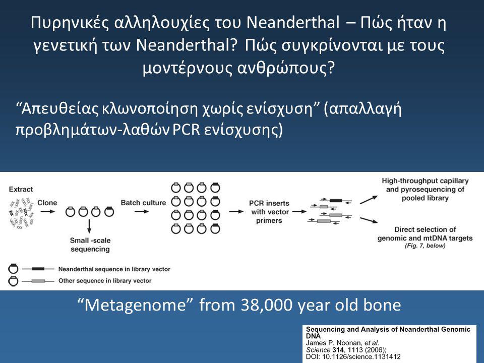 """Πυρηνικές αλληλουχίες του Neanderthal – Πώς ήταν η γενετική των Neanderthal? Πώς συγκρίνονται με τους μοντέρνους ανθρώπους? """"Απευθείας κλωνοποίηση χωρ"""