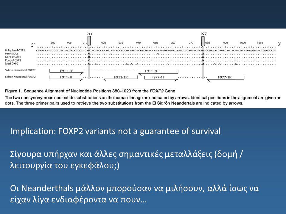 Implication: FOXP2 variants not a guarantee of survival Σίγουρα υπήρχαν και άλλες σημαντικές μεταλλάξεις (δομή / λειτουργία του εγκεφάλου;) Οι Neander