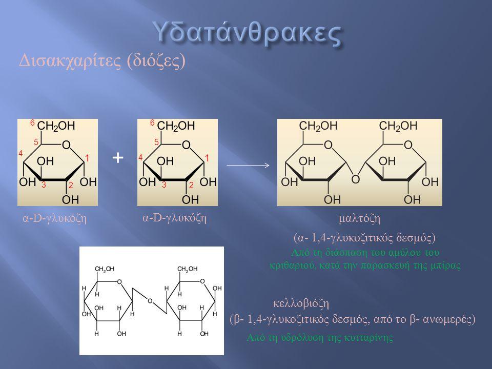 + Δισακχαρίτες (διόζες) α-D-γλυκόζη μαλτόζη (α- 1,4-γλυκοζιτικός δεσμός) 4 2 1 3 5 6 2 1 3 5 6 4 4 (β- 1,4-γλυκοζιτικός δεσμός, από το β- ανωμερές) κε