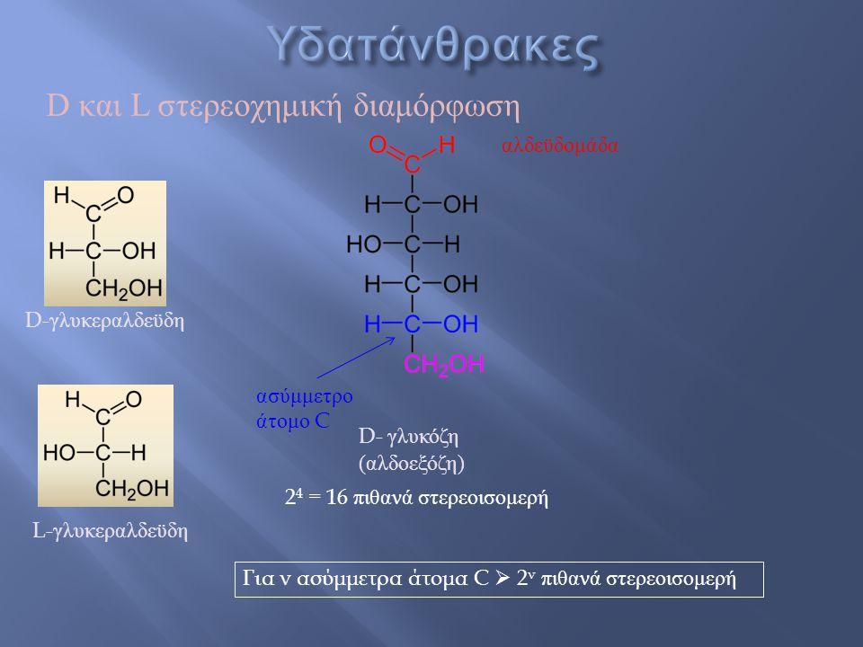 αλδεϋδομάδα ασύμμετρο άτομο C D- γλυκόζη ( αλδοεξόζη ) 2 4 = 16 πιθανά στερεοισομερή D και L στερεοχημική διαμόρφωση D- γλυκεραλδεϋδη L- γλυκεραλδεϋδη