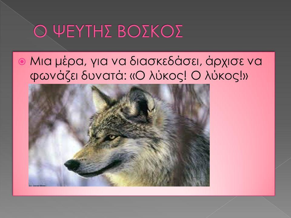 Μια μέρα, για να διασκεδάσει, άρχισε να φωνάζει δυνατά: «Ο λύκος! Ο λύκος!»