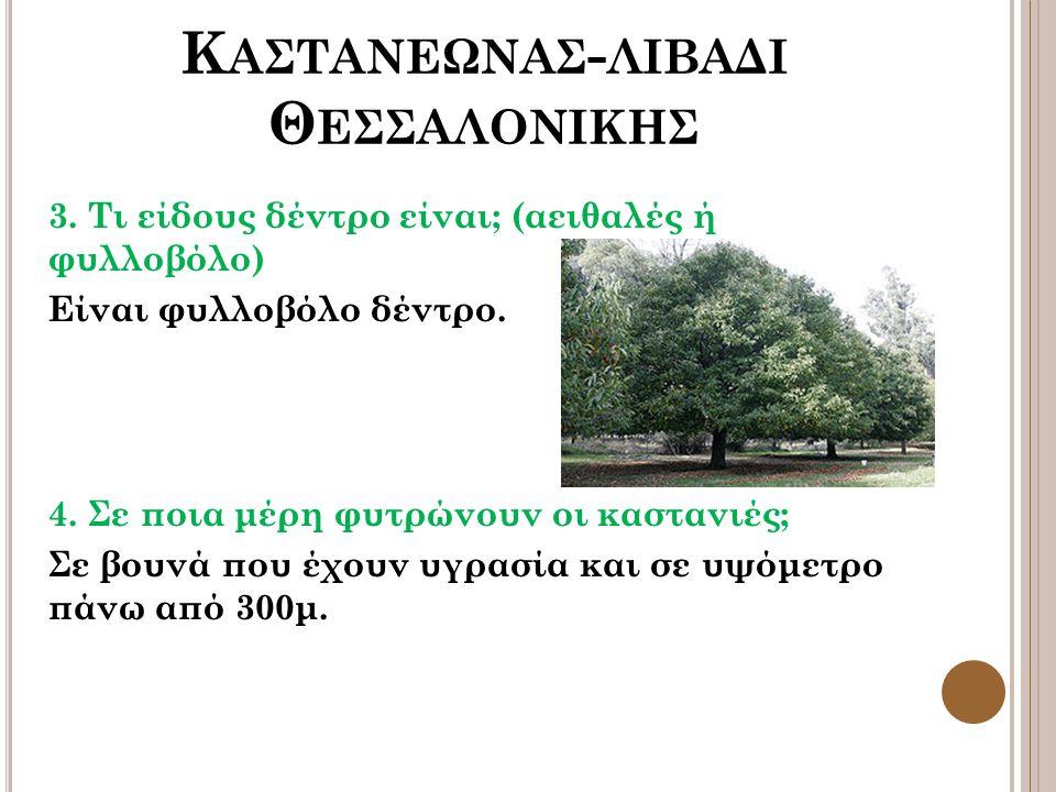 Κ ΑΣΤΑΝΕΩΝΑΣ - ΛΙΒΑΔΙ Θ ΕΣΣΑΛΟΝΙΚΗΣ 3. Τι είδους δέντρο είναι; (αειθαλές ή φυλλοβόλο) Είναι φυλλοβόλο δέντρο. 4. Σε ποια μέρη φυτρώνουν οι καστανιές;