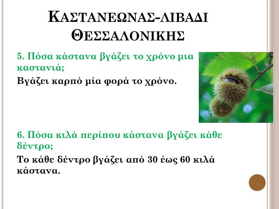 Κ ΑΣΤΑΝΕΩΝΑΣ - ΛΙΒΑΔΙ Θ ΕΣΣΑΛΟΝΙΚΗΣ 5.