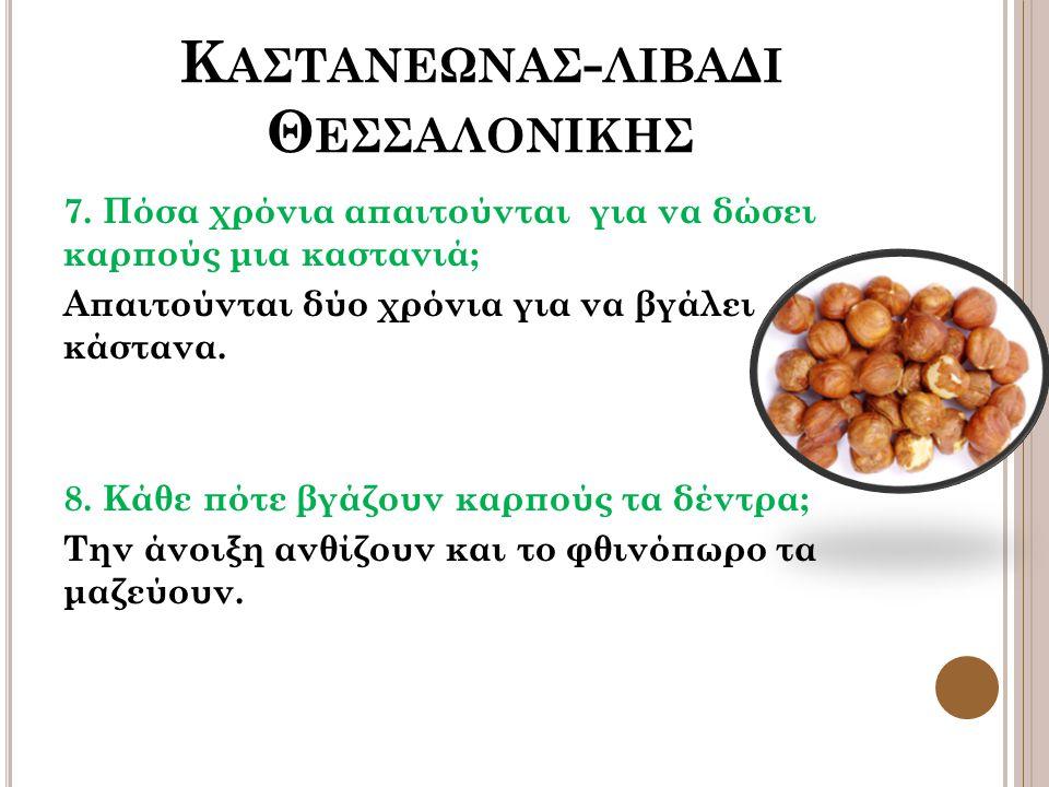 Κ ΑΣΤΑΝΕΩΝΑΣ - ΛΙΒΑΔΙ Θ ΕΣΣΑΛΟΝΙΚΗΣ 7.