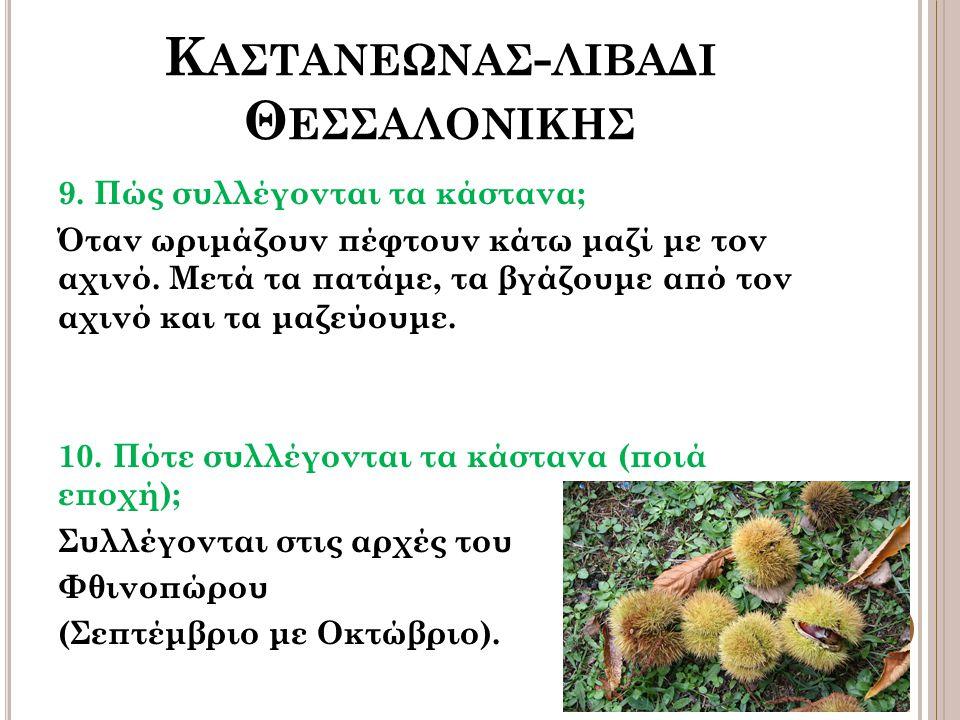 Κ ΑΣΤΑΝΕΩΝΑΣ - ΛΙΒΑΔΙ Θ ΕΣΣΑΛΟΝΙΚΗΣ 9.