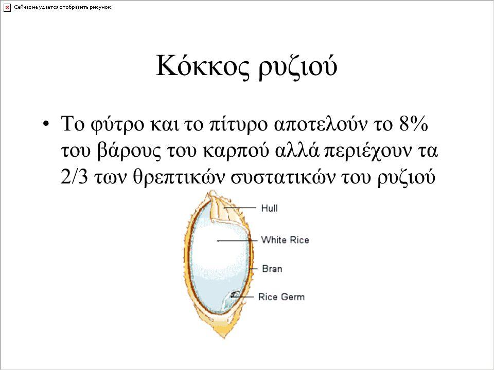 Κόκκος ρυζιού Το φύτρο και το πίτυρο αποτελούν το 8% του βάρους του καρπού αλλά περιέχουν τα 2/3 των θρεπτικών συστατικών του ρυζιού