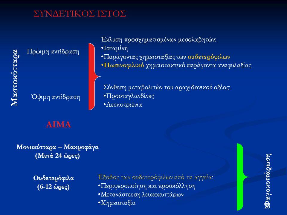 Μαστοκύτταρα Πρώιμη αντίδραση Όψιμη αντίδραση Έκλυση προσχηματισμένων μεσολαβητών: Ισταμίνη Παράγοντας χημειοταξίας των ουδετερόφιλων Ηωσινοφιλικό χημ