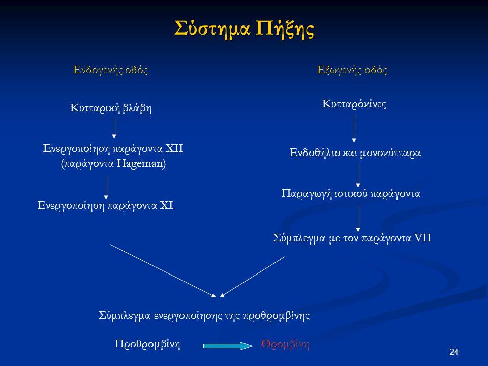 Σύστημα Πήξης Ενδογενής οδόςΕξωγενής οδός Κυτταρική βλάβη Ενεργοποίηση παράγοντα ΧΙΙ (παράγοντα Hageman) Ενεργοποίηση παράγοντα ΧΙ Κυτταρόκίνες Ενδοθή