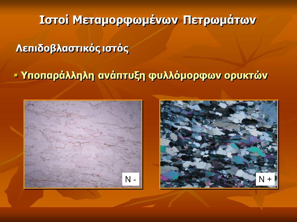 Λεπιδοβλαστικός ιστός  Υποπαράλληλη ανάπτυξη φυλλόμορφων ορυκτών Ν -Ν + Ιστοί Μεταμορφωμένων Πετρωμάτων