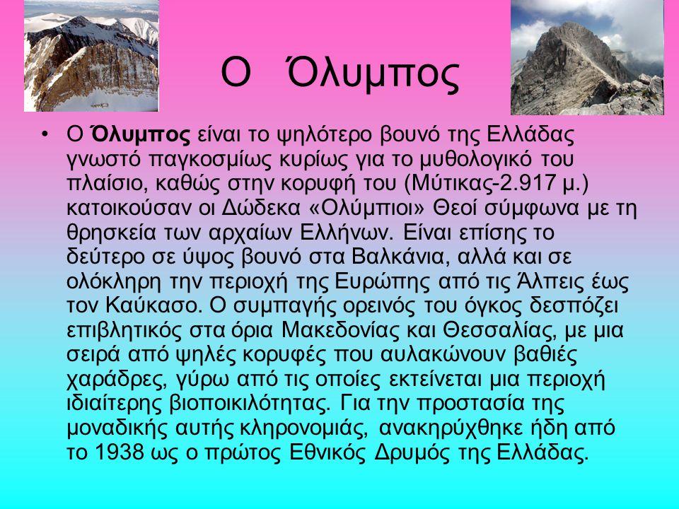 O Όλυμπος Ο Όλυμπος είναι το ψηλότερο βουνό της Ελλάδας γνωστό παγκοσμίως κυρίως για το μυθολογικό του πλαίσιο, καθώς στην κορυφή του (Μύτικας-2.917 μ