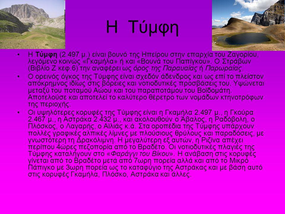 Η Τύμφη Η Τύμφη (2.497 μ.) είναι βουνό της Ηπείρου στην επαρχία του Ζαγορίου, λεγόμενο κοινώς «Γκαμήλα» ή και «Βουνά του Παπίγκου». Ο Στράβων (Βιβλίο