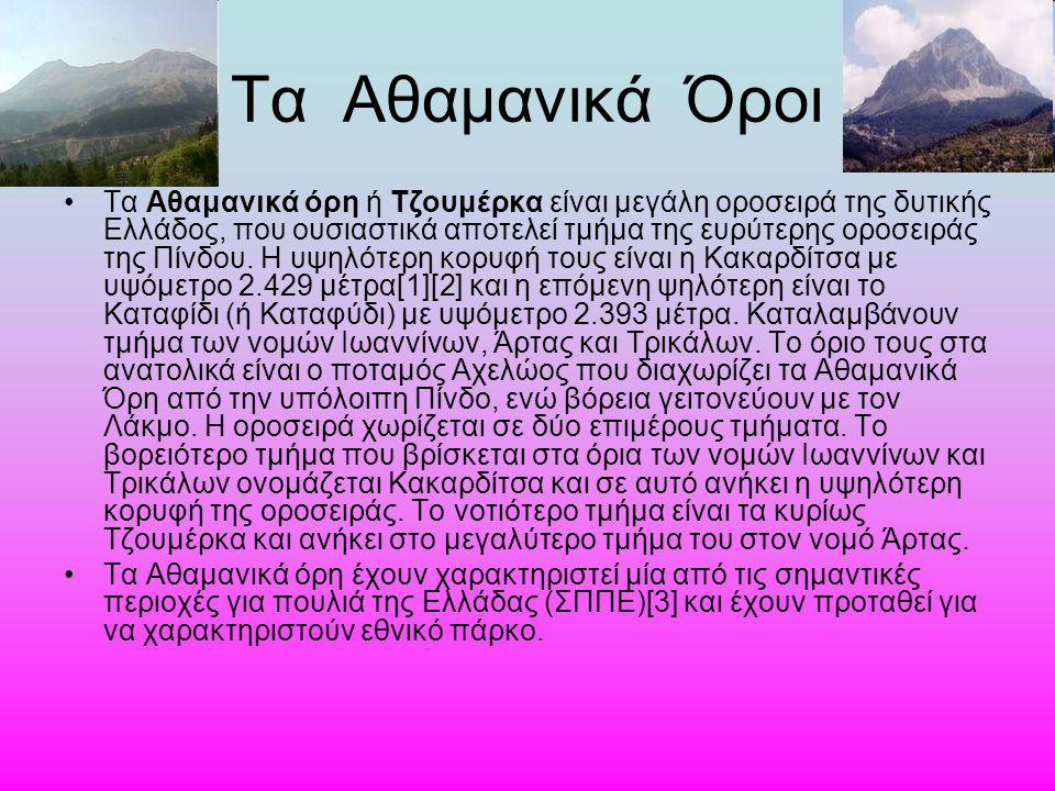 Τα Αθαμανικά Όροι Τα Αθαμανικά όρη ή Τζουμέρκα είναι μεγάλη οροσειρά της δυτικής Ελλάδος, που ουσιαστικά αποτελεί τμήμα της ευρύτερης οροσειράς της Πί