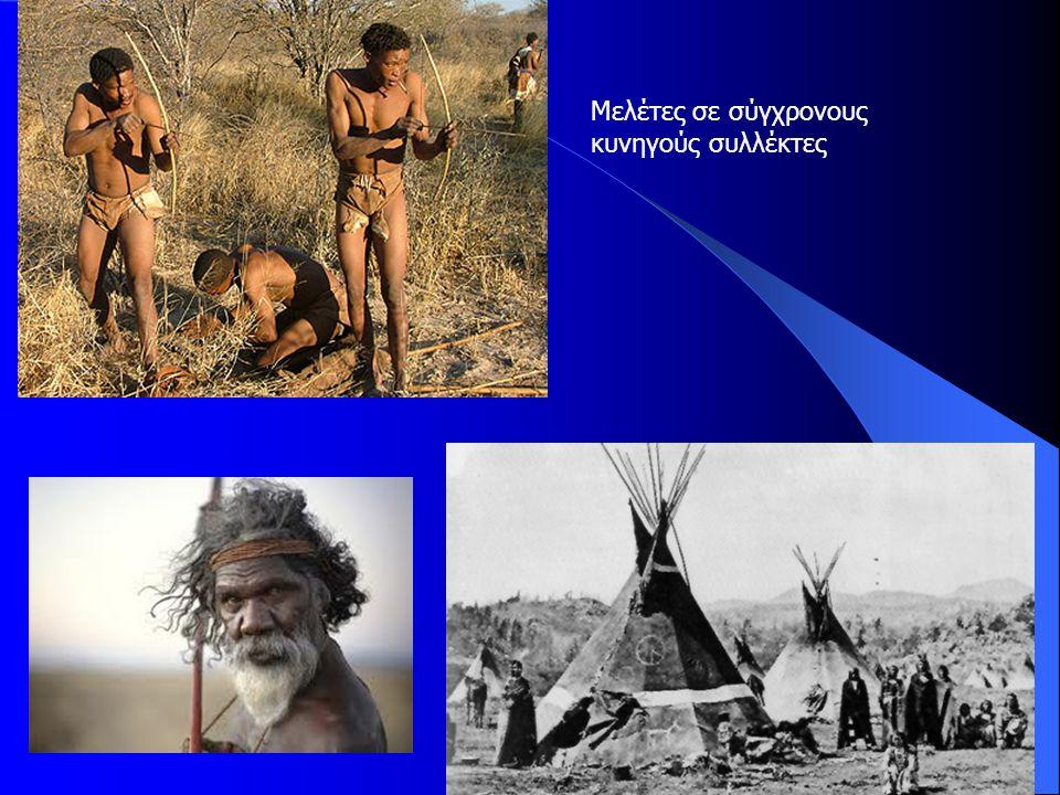 Μελέτες σε σύγχρονους κυνηγούς συλλέκτες