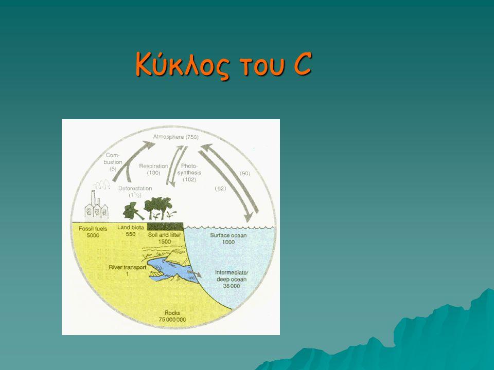 Κύκλος του C