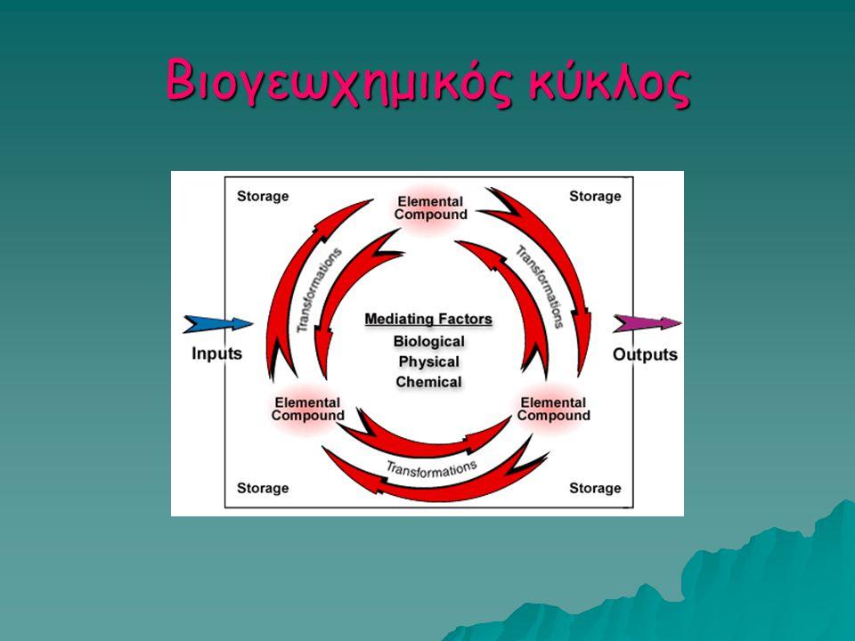 Κύκλος του P  Oργανικές ενώσεις: φωσφορικοί εστέρες  Ανόργανη ύλη: ορθοφωσφορικά ιόντα (συνήθως αδιάλυτα  περιοριστικός παράγοντας για την απορρόφηση από τους μο)