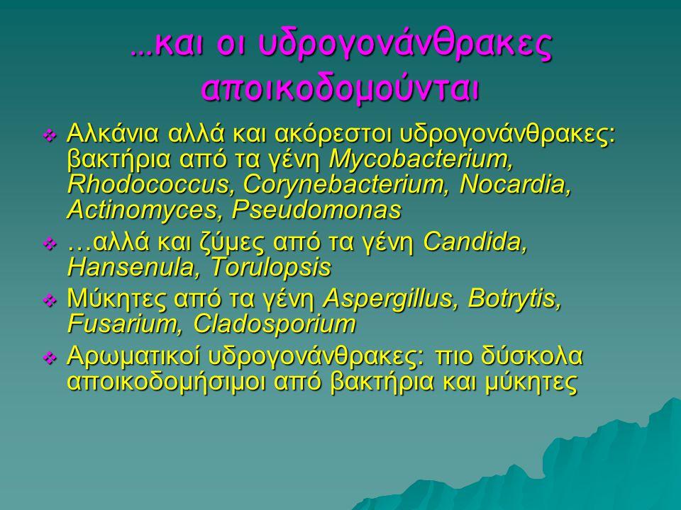 …και οι υδρογονάνθρακες αποικοδομούνται  Αλκάνια αλλά και ακόρεστοι υδρογονάνθρακες: βακτήρια από τα γένη Mycobacterium, Rhodococcus, Corynebacterium, Nocardia, Actinomyces, Pseudomonas  …αλλά και ζύμες από τα γένη Candida, Hansenula, Torulopsis  Μύκητες από τα γένη Aspergillus, Botrytis, Fusarium, Cladosporium  Aρωματικοί υδρογονάνθρακες: πιο δύσκολα αποικοδομήσιμοι από βακτήρια και μύκητες