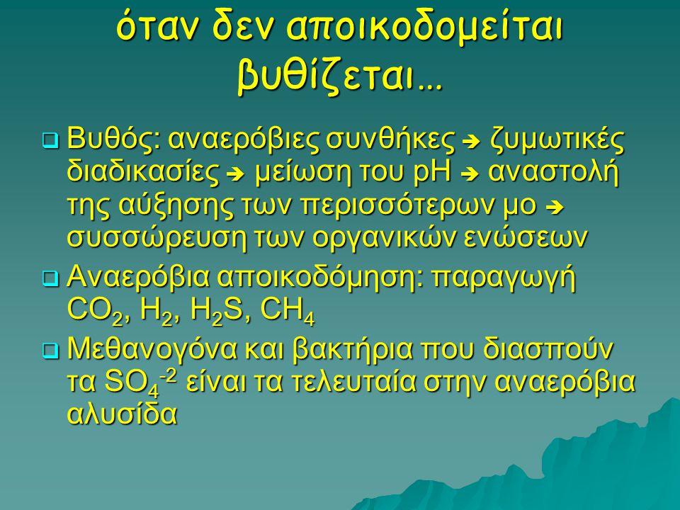 όταν δεν αποικοδομείται βυθίζεται…  Βυθός: αναερόβιες συνθήκες  ζυμωτικές διαδικασίες  μείωση του pH  αναστολή της αύξησης των περισσότερων μο  συσσώρευση των οργανικών ενώσεων  Αναερόβια αποικοδόμηση: παραγωγή CO 2, H 2, H 2 S, CH 4  Μεθανογόνα και βακτήρια που διασπούν τα SO 4 -2 είναι τα τελευταία στην αναερόβια αλυσίδα