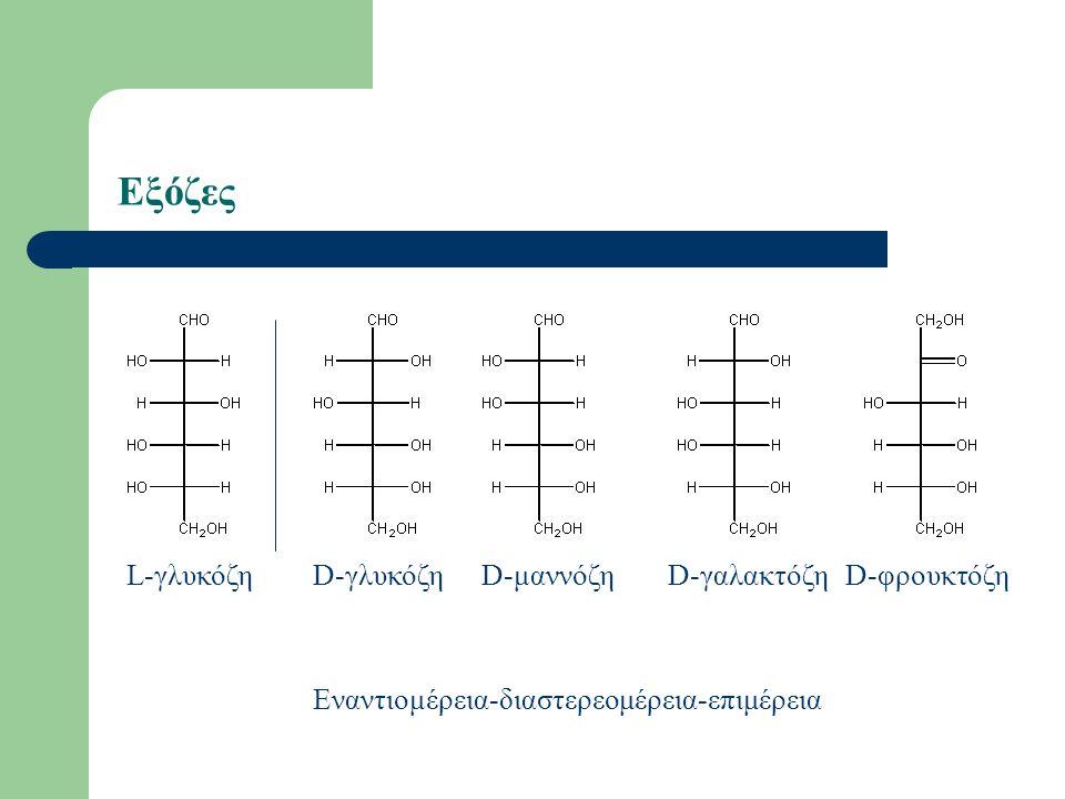Εξόζες L-γλυκόζηD-μαννόζηD-γαλακτόζηD-γλυκόζηD-φρουκτόζη Εναντιομέρεια-διαστερεομέρεια-επιμέρεια