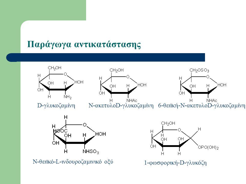Παράγωγα αντικατάστασης D-γλυκοζαμίνηΝ-ακετυλοD-γλυκοζαμίνη6-θειϊκή-Ν-ακετυλοD-γλυκοζαμίνη Ν-θειϊκό-L-ινδουροζαμινικό οξύ 1-φωσφορική-D-γλυκόζη