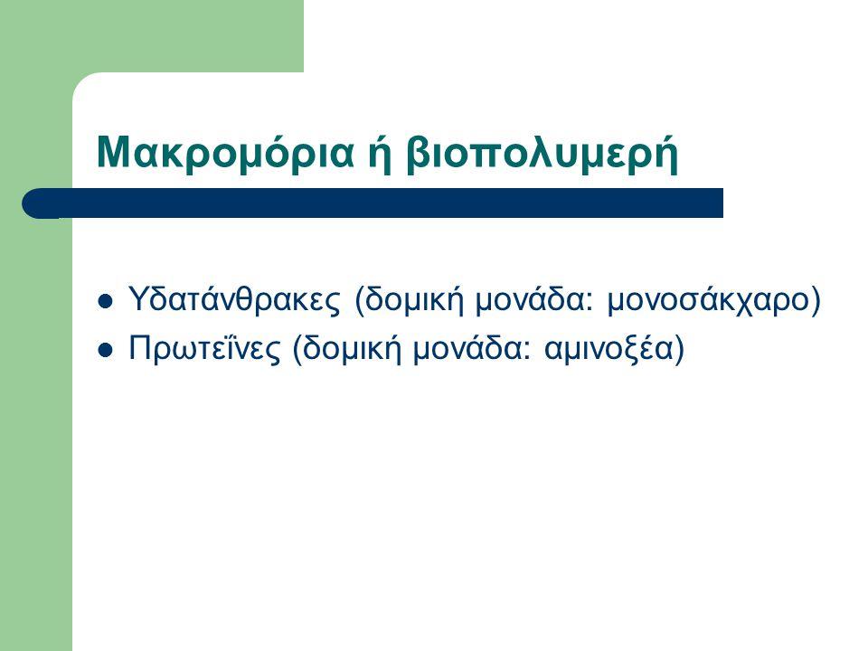 Μακρομόρια ή βιοπολυμερή Υδατάνθρακες (δομική μονάδα: μονοσάκχαρο) Πρωτεΐνες (δομική μονάδα: αμινοξέα)