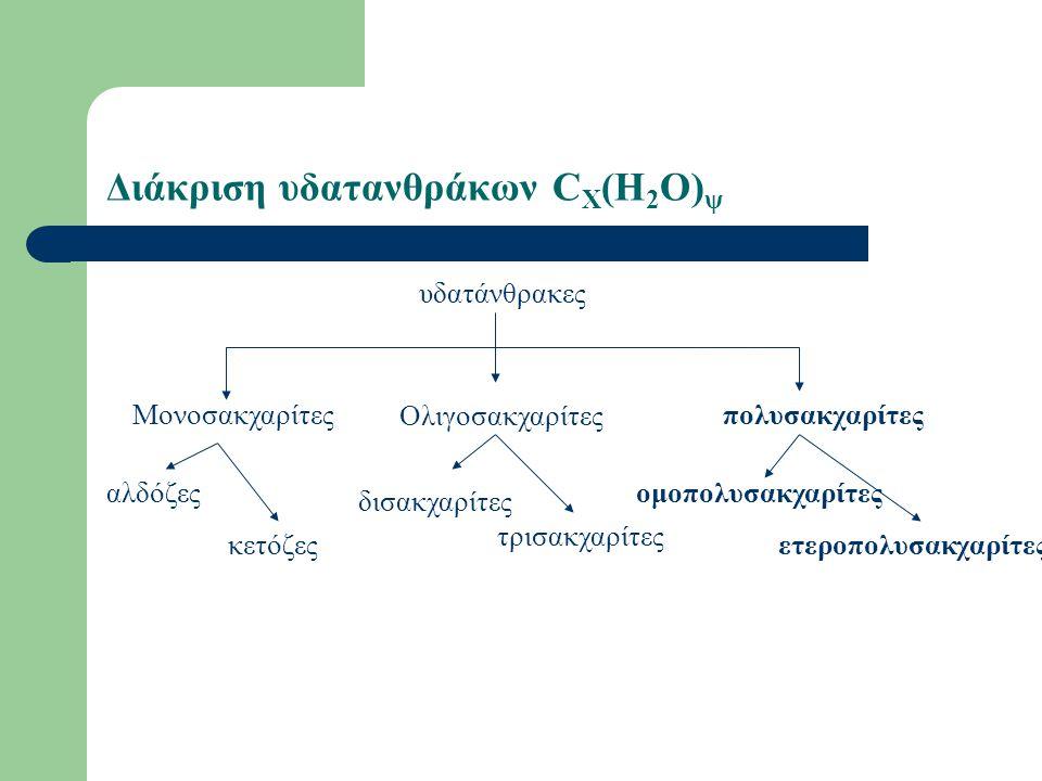 Μονοσακχαρίτες Τριόζες (γλυκεριναλδεϋδη) Τετρόζες (θρεόζη, ερυθρόζη) Πεντόζες (ριβόζη, ξυλόζη, αραβινόζη ) Εξόζες (γλυκόζη, μαννόζη, γαλακτόζη,φρουκτόζη)