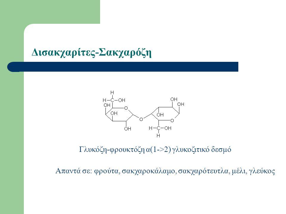 Δισακχαρίτες-Σακχαρόζη Γλυκόζη-φρουκτόζη α(1->2) γλυκοζιτικό δεσμό Απαντά σε: φρούτα, σακχαροκάλαμο, σακχαρότευτλα, μέλι, γλεύκος