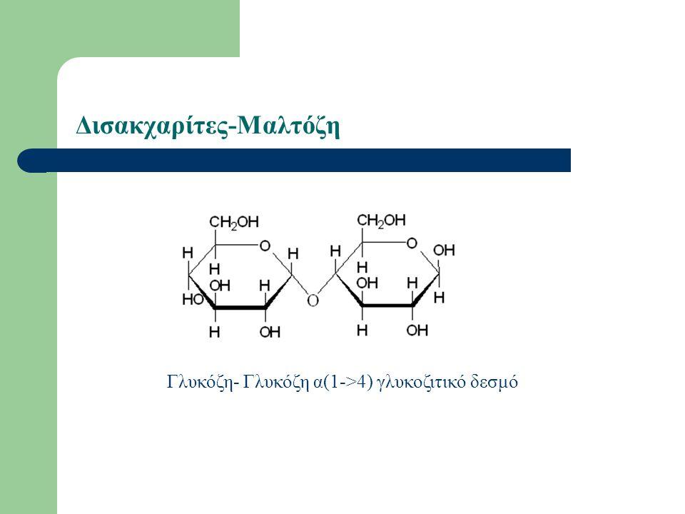 Δισακχαρίτες-Μαλτόζη Γλυκόζη- Γλυκόζη α(1->4) γλυκοζιτικό δεσμό