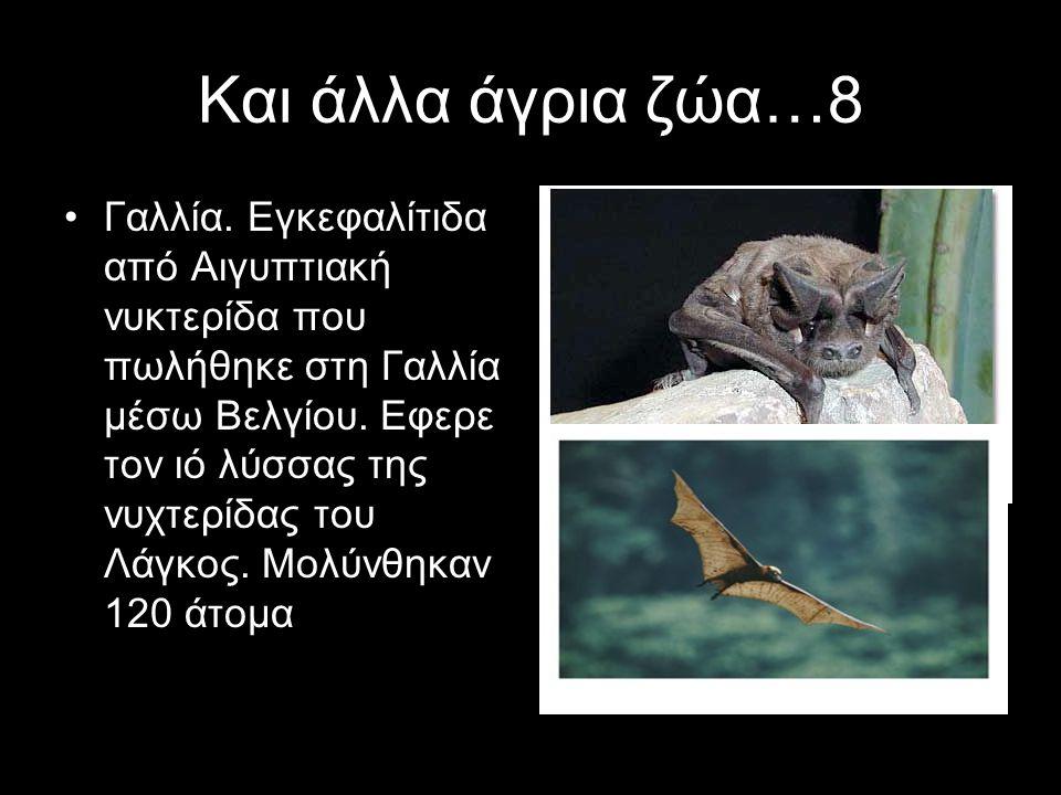 Και άλλα άγρια ζώα…8 Γαλλία. Εγκεφαλίτιδα από Αιγυπτιακή νυκτερίδα που πωλήθηκε στη Γαλλία μέσω Βελγίου. Εφερε τον ιό λύσσας της νυχτερίδας του Λάγκος