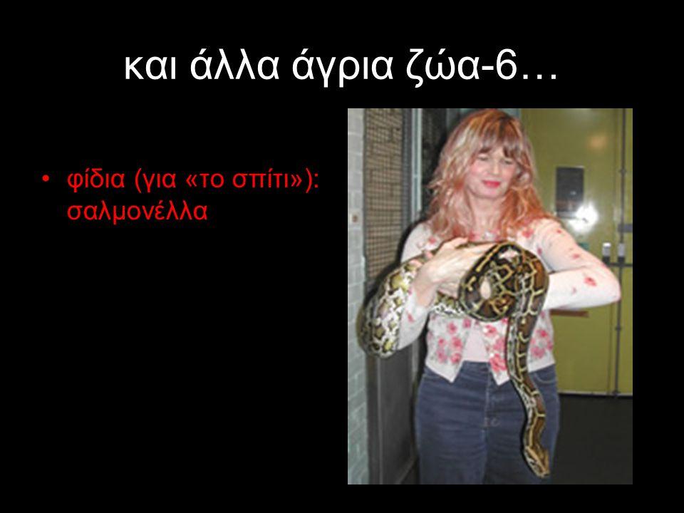 και άλλα άγρια ζώα-6… φίδια (για «το σπίτι»): σαλμονέλλα